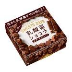 チョコレートが乳酸菌のひとりだちを救う??~乳酸菌の腸内生存率UPの根拠~