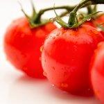 カゴメのトマトジュースバカ売れのなぜ?~機能性表示食品制度と健康~